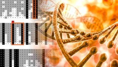 Photo of مطالعه دانشگاه Yale علت و درمان بیماری پوستی ژنتیکی را یافت