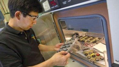 Photo of پیشرفت غیرمنتظره در ساخت باتریهای لیتیوم-گوگرد با کمک جلبکهای دریایی