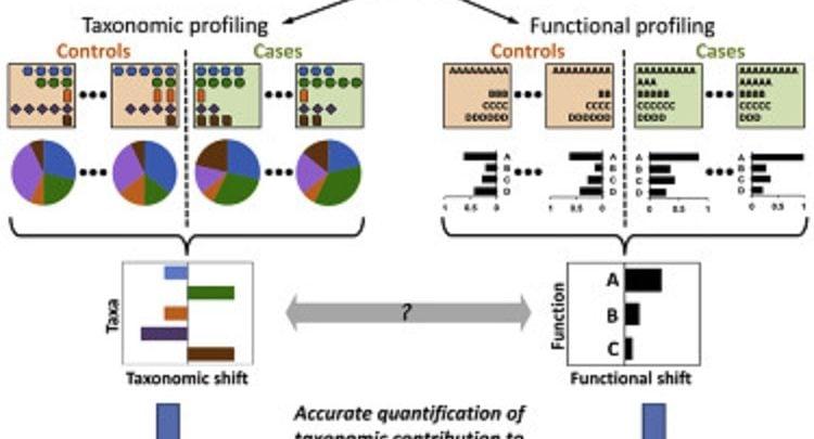 روش نوین FishTaco: آشکارسازی عملکرد میکروبیوم