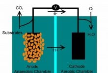 Photo of تبدیل متان به الکتریسیته با باکتریها