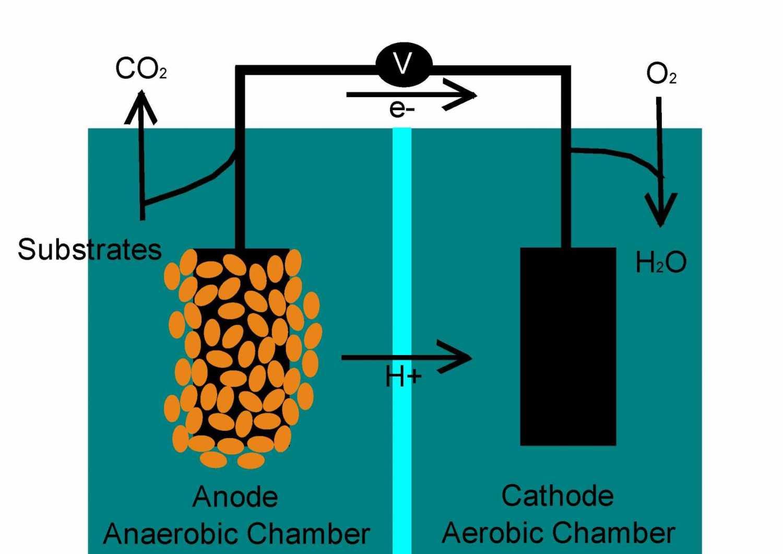 تبدیل متان به الکتریسیته با باکتریها