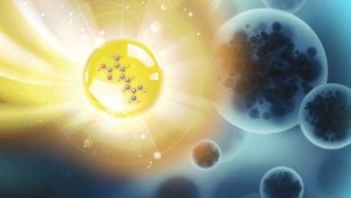 Antibiotic nanoparticles fight drug-resistant bacteria - اخبار زیست فن