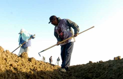 Bringing our soil back to life with the latest in earth science - اخبار زیست فن