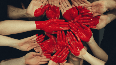 Photo of سیستم ایمنی باعث بیماری قلبی می شود