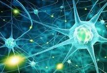 Photo of درمان جدید برای بیماری های عصبی