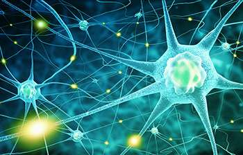 New gene therapy treatment routes for motor neurone disease uncovered in new study - اخبار زیست فن