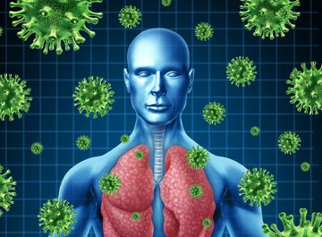 New insights into why the immune system fails to see cancer - اخبار زیست فن