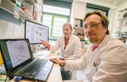 ردیابی حدواسط فعال آنزیم هیدروژناز - اخبار زیست فناوری