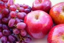 ترکیبات گیاهی نابودگر سرطان پروستات - اخبار زیست فناوری