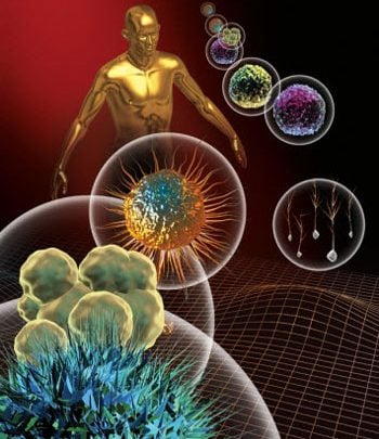Blunting CRISPR's 'scissors' gives new insight into autoimmune disorders - اخبار زیست فن