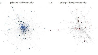 Photo of شبکههای تنظیم ژنی، منبع اطلاعات ارزشمند برای اصلاح ژنتیکی