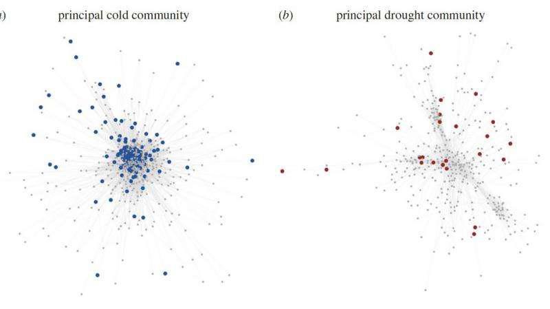 شبکههای تنظیم ژنی، منبع اطلاعات ارزشمند برای اصلاح ژنتیکی - اخبار زیست فناوری