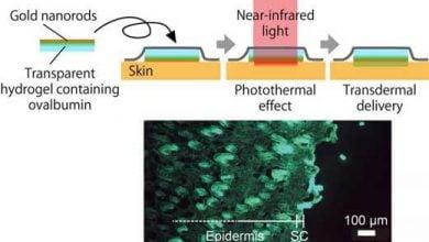 سیستم جدید حرارتی در تحویل دارو - اخبار زیست فناوری