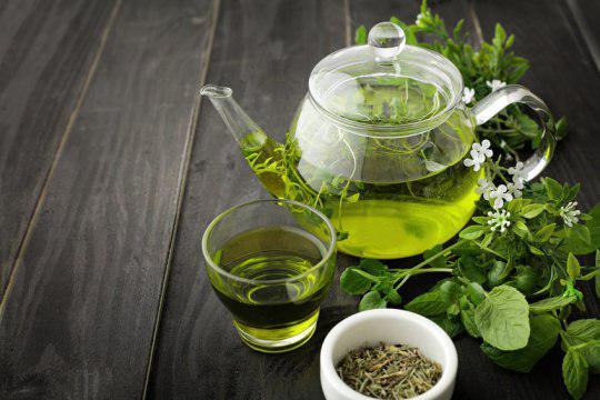 مقاومت انسولینی مغز و چاقی با مصرف چای سبز - اخبار زیست فناوری