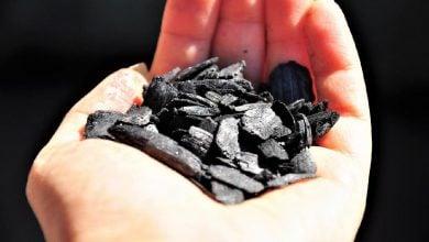 Photo of زغال زیستی و تصفیه هوا