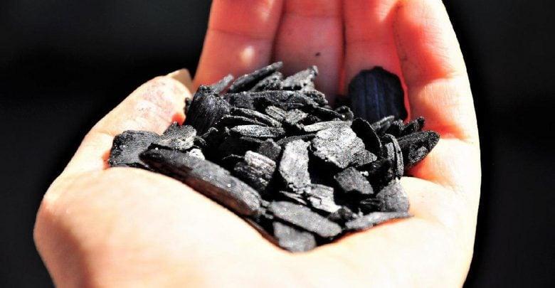 زغال زیستی و تصفیه هوا - اخبار زیست فناوری
