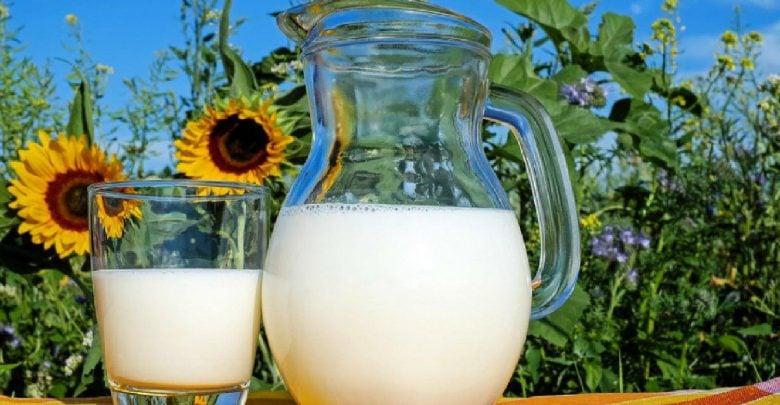 شیر و خطر ابتلا به سرطان تخمدان - اخبار زیست فناوری