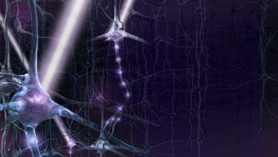 Photo of کنترل مغز با نور