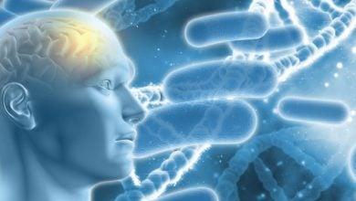 Photo of آیا میکروبها باعث بیماری آلزایمر می شوند؟