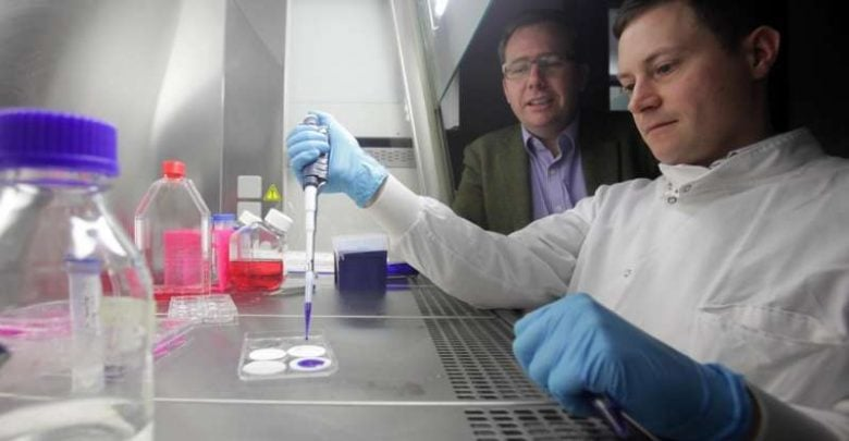 Encapsulated human cells to revolutionize cell research - اخبار زیست فن