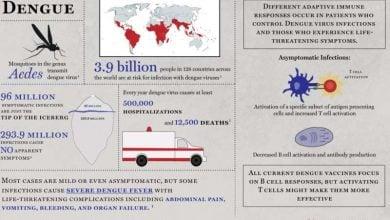 Photo of واکنش ژنتیکی و ایمنی بدن در برابر تب dengue
