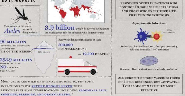 Gene expression patterns and immune signatures associated with dengue fever immune response identified - اخبار زیست فن