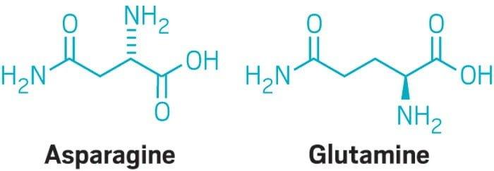 Making the diabetes drug exenatide more stable - اخبار زیست فن