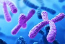 Photo of Sequencing all 24 human chromosomes uncovers rare disorders