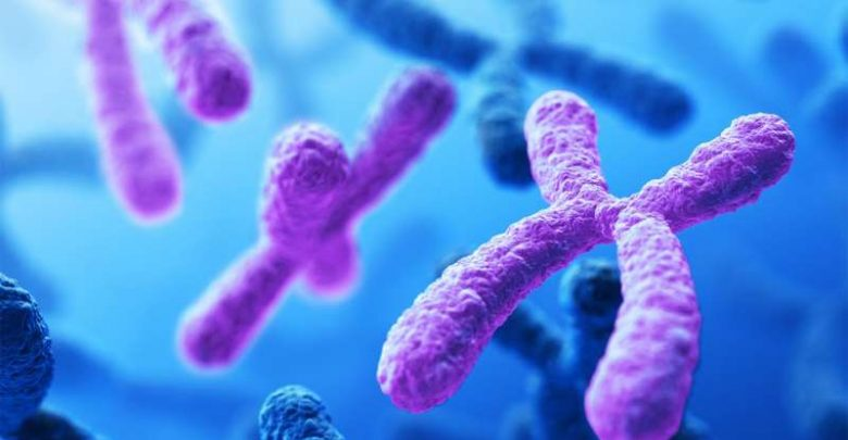 Sequencing all 24 human chromosomes uncovers rare disorders - اخبار زیست فن