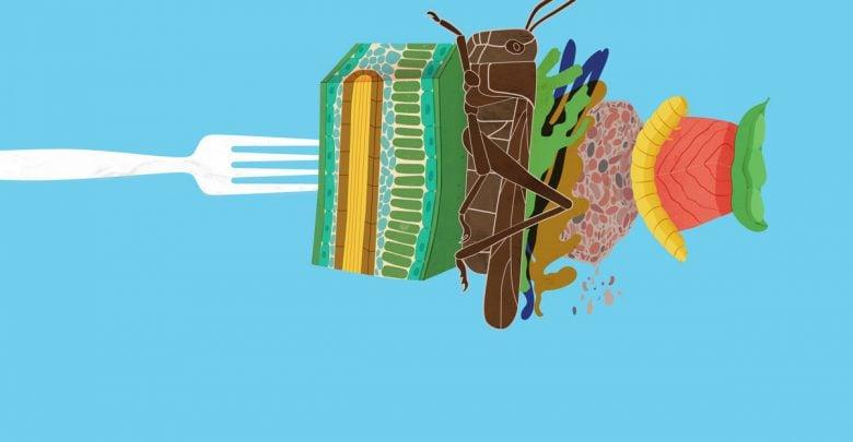 Seven alternative proteins - اخبار زیست فن