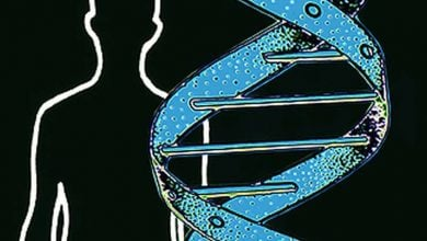 Universal sequencing of cancer genes ups mutation detection - اخبار زیست فن