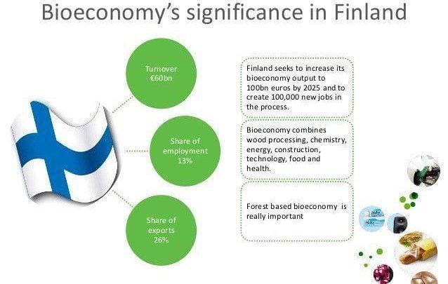 استراتژیهای اقتصاد زیستی فنلاند - اخبار زیست فناوری