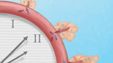 Photo of ابداع آزمایش خون برای شناسایی زودهنگام DNAهای سرطانی