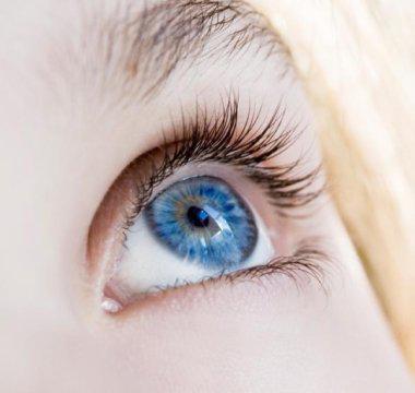 تمامی افراد چشم آبی یک جد مشترک دارند - اخبار زیست فناوری