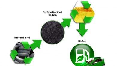 Photo of کمک آشپزی به تولید سوخت زیستی