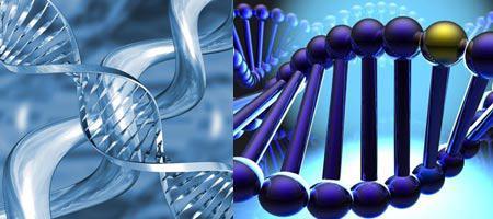زیربنای ژنتیکی اختلالهای تغذیهای