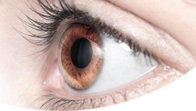 Photo of میکروبیوم چشم؟!