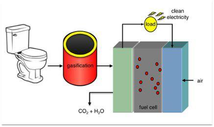 تولید برق از ضایعات «دستمال توالت»! - اخبار زیست فناوری
