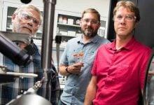 Photo of ارزش آنزیم سوخت های زیستی در آخرین تحقیقات