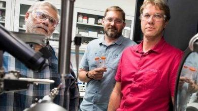 ارزش آنزیم سوخت های زیستی در آخرین تحقیقات - اخبار زیست فناوری