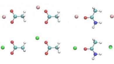 Photo of تجزیه و تحلیل میدان نیرو و سرنخ برهمکنش پروتئین-یون