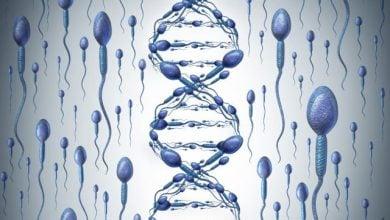 تأثیر مدت زمان خواب بر تمامیت DNA اسپرم – اخبار زیست فناوری