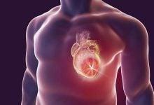 ژنهای سرطان خون؛ کلیدهای پیشگیری نارسایی قلبی - اخبار زیست فناوری