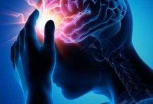 تشنج و از دست دادن حافظه – اخبار زیست فناوری