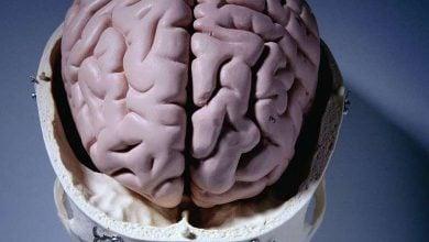 Photo of روشی شناختی برای تشخیص زودهنگام آلزایمر