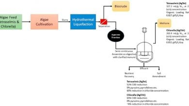 Photo of تبدیل پسماند فرایند تولید سوخت زیستی به کالای باارزش