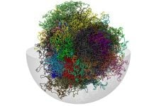 فعالسازی ژنها - اخبار زیست فناوری