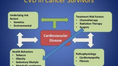 درمان سرطان و بیماریهای قلبی - اخبار زیست فناوری