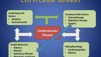 Photo of گام بزرگ محققین استرالیایی برای درمان سرطان و بیماریهای قلبی