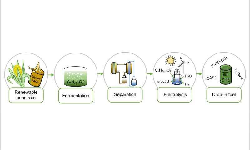 تولید سوخت از زیستتوده توسط تبدیلات میکروبی و الکتروشیمیایی - اخبار زیست فناوری